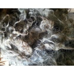 Råull / Otvättad ull från Gotlandsfår 100 g
